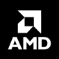 Dedicated Server AMD 1